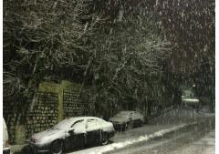 Photos : Ain Draham sous la neige